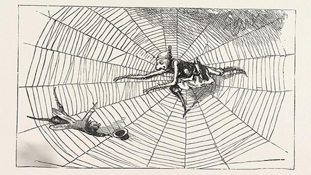 Laba-laba dan Lalat