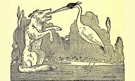 Serigala Yang Tersedak Tulang dan Burung Bangau