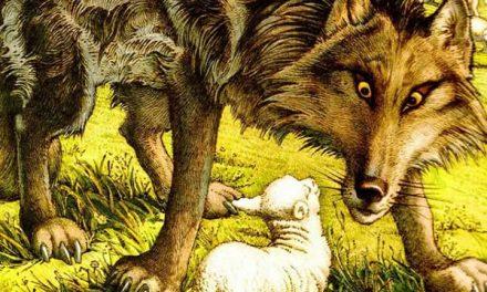 Serigala dan Anak Kambing yang Berhati-hati