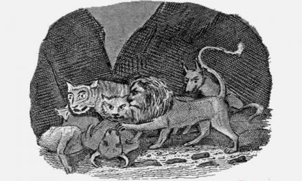 Singa, Keledai dan Rubah Berbagi Mangsa