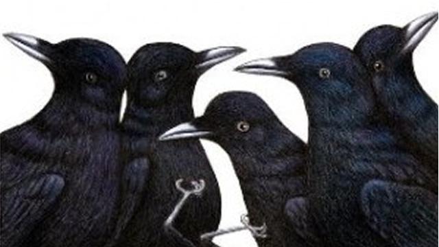 Tujuh Burung Gagak