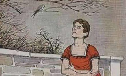 Pemuda dan Seekor Burung Layang-Layang