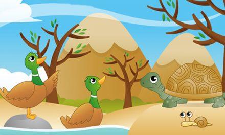 Kura-kura dan Sepasang Itik